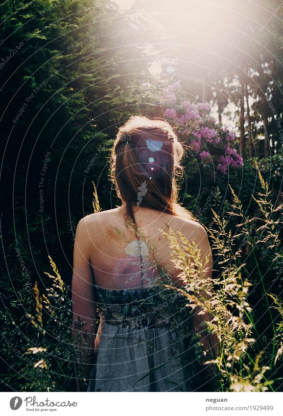 into the nature Lifestyle Healthy Human being Young woman Youth (Young adults) Environment Nature Plant Flower Exotic Emotions Moody Love Adventure Loneliness