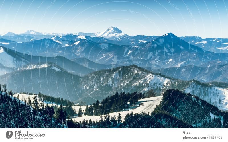View from the Unterberg to the Ötscher Skiing Snow hiking Tourism Trip Winter vacation Mountain Nature Landscape Air Cloudless sky Beautiful weather Fir tree