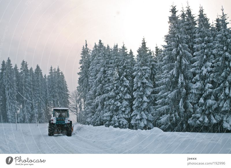 Nature Sky Winter Street Forest Cold Snow Work and employment Landscape Weather Environment Driving Agriculture Snowscape Tractor Arrangement
