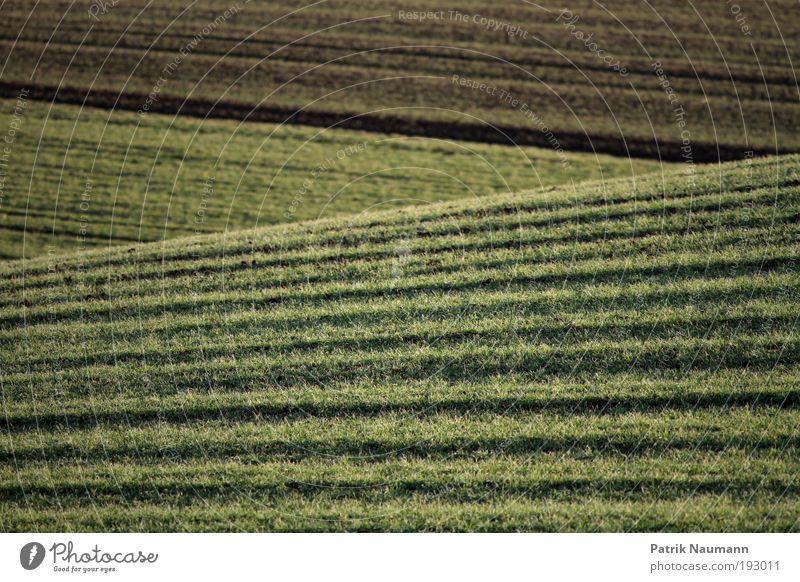 landscape lines Senses Relaxation Calm Far-off places Freedom Environment Nature Landscape Earth Climate Climate change Grass Field Spring fever Determination