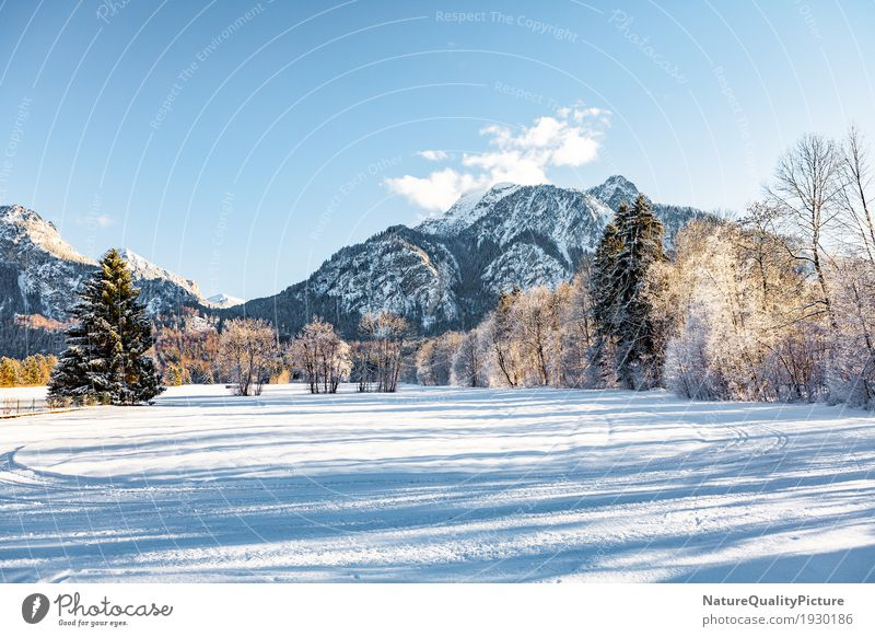 Sky Nature Vacation & Travel Plant Tree Landscape Clouds Winter Forest Mountain Environment Background picture Snow Rock Park Hiking