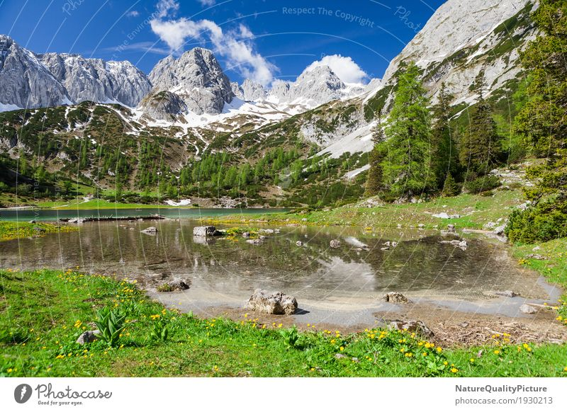 Sky Nature Vacation & Travel Plant Summer Water Sun Landscape Flower Relaxation Clouds Calm Far-off places Mountain Life Lanes & trails