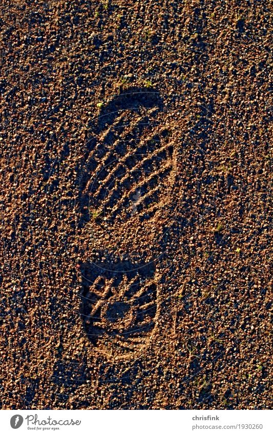 Sole imprint in sand Hiking Climbing Mountaineering Construction site Human being Feet Sand Lakeside River bank Footwear Going Running Brown Colour photo