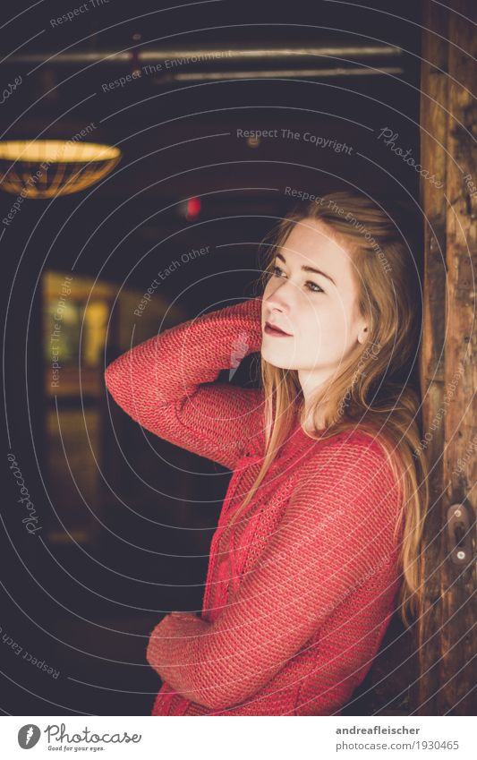 Natural beauty Feminine Young woman Youth (Young adults) 1 Human being 18 - 30 years Adults Sweater Blonde Long-haired Wait Patient Barn Farm Red Brown