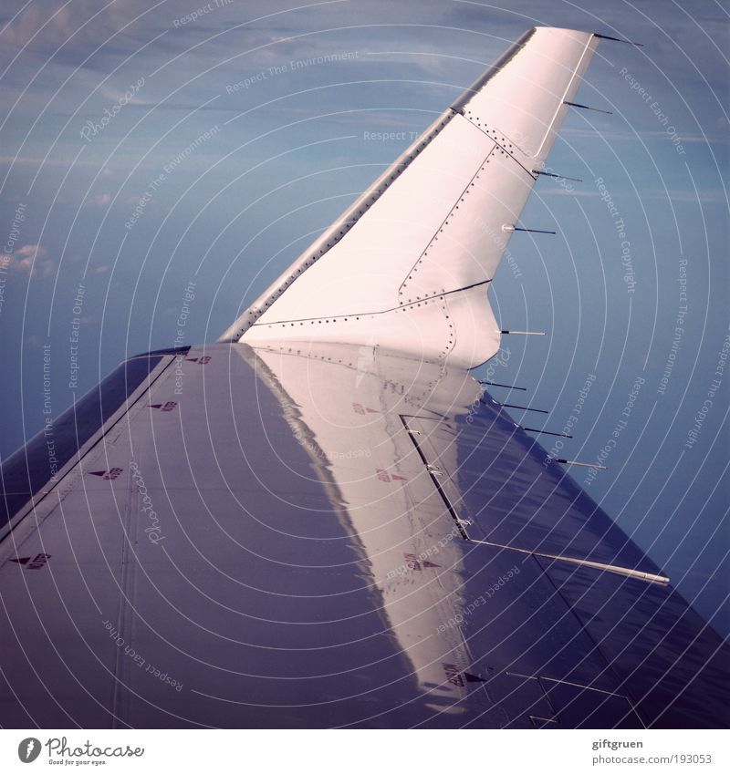 Sky Vacation & Travel Clouds Far-off places Airplane Flying Transport Aviation Technology Logistics Infinity Wing Airport Economy Hover Passenger traffic
