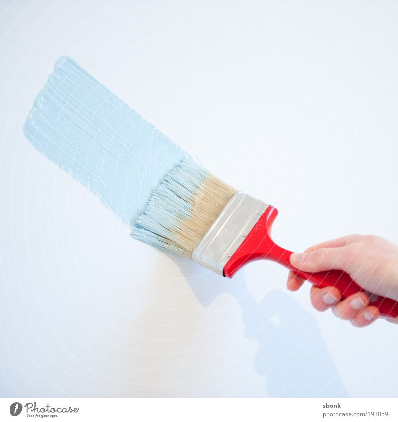 Blue Red Flat (apartment) Painting (action, work) Moving (to change residence) Painting (action, artwork) Redecorate Painter Paintbrush Profession Building Brush stroke Baby blue