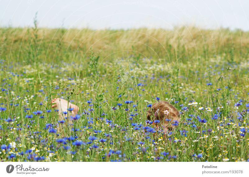 Human being Child Nature Girl Sky Flower Plant Summer Meadow Grass Garden Head Park Warmth Landscape Air