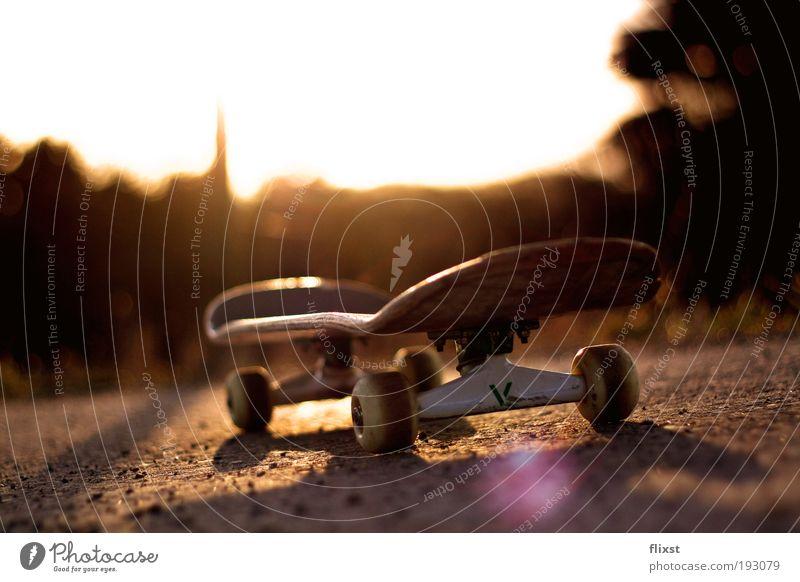 Beautiful weather Skateboard Dusk Back-light Funsport Lens flare Object photography