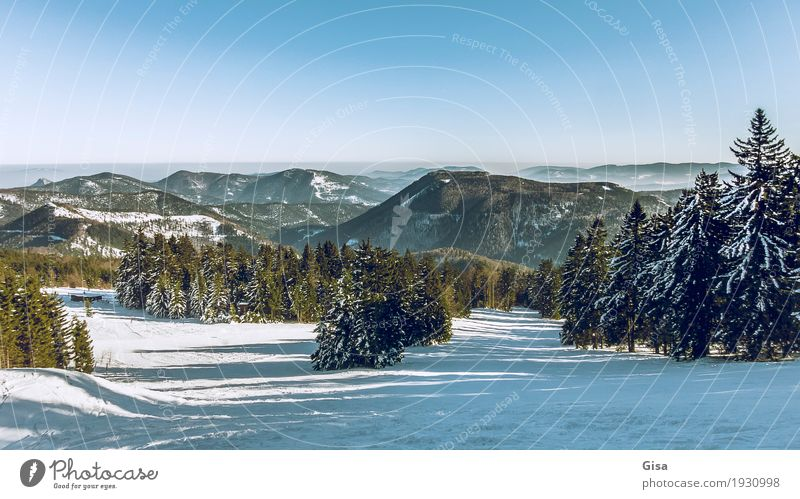 View from the Unterberg to the foothills of the Alps Snow hiking Skiing Winter Landscape Cloudless sky Beautiful weather Mountain To enjoy Exceptional Fantastic