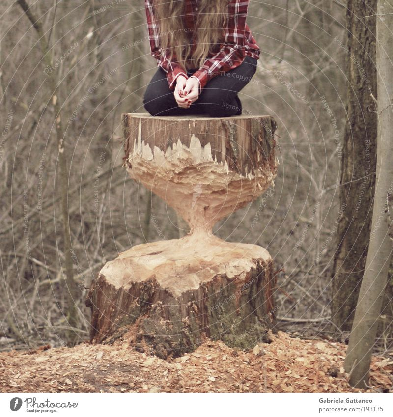Human being Tree Hand Calm Environment Feminine Emotions Fear Dangerous Threat Clock Shirt Tree trunk Long-haired Stagnating Crouch