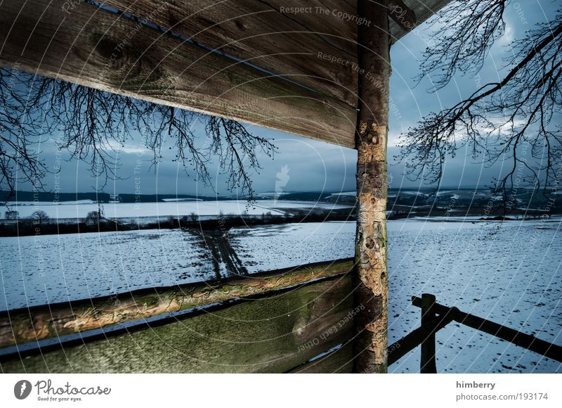 shotspot Hunting Environment Nature Landscape Winter Climate Weather Ice Frost Snow Meadow Field Calm Hunting grounds Tree house Wooden house Colour photo