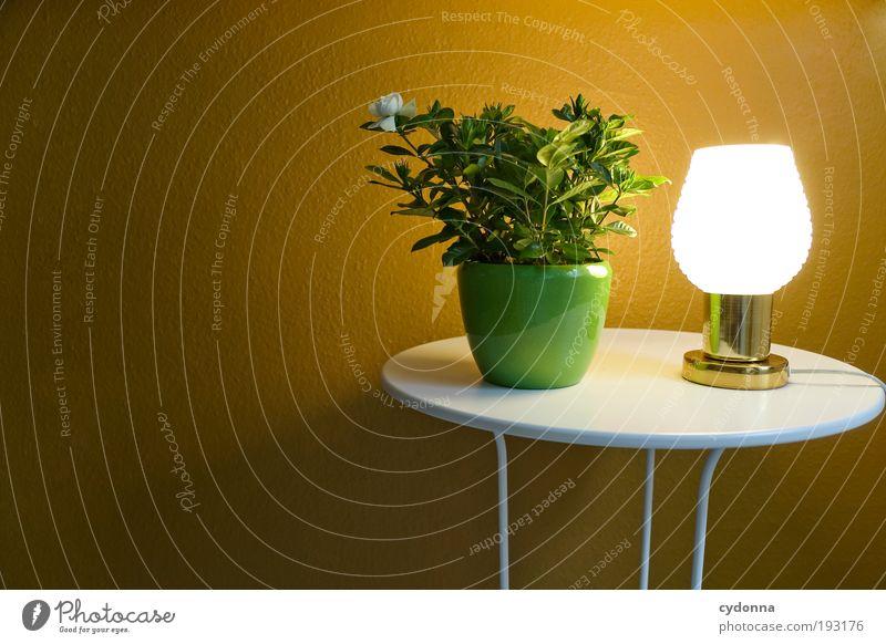 light therapy Style Design Calm Decoration Lamp Table Wallpaper Plant Pot plant Idea Luminosity Colour photo Interior shot Deserted Copy Space left