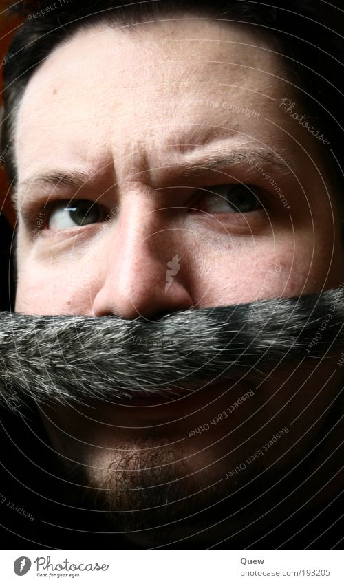 Luigi Human being Masculine Man Adults Face Facial hair 1 Moustache Exceptional Funny cat's tail Colour photo Interior shot Artificial light Shadow