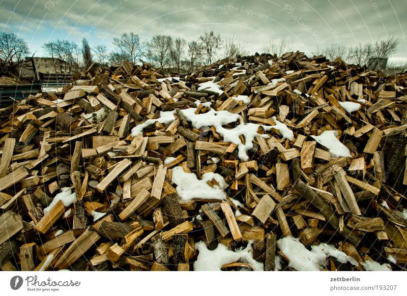Wood Multiple Organic produce Organic farming Stack Heap Heat Firewood February Biomass Warm period