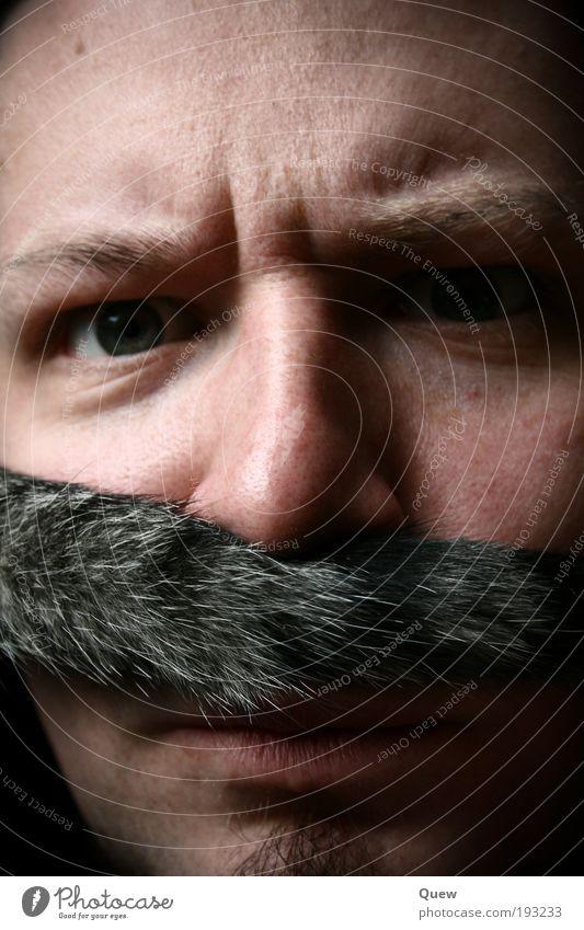 Human being Man Cat Adults Face Skin Masculine Hair Pelt 18 - 30 years Anger Facial hair Moustache Young man Ferocious