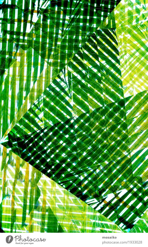 Textures of Tropical Plants Nature Green Life Lifestyle Natural Style Art Design Elegant Esthetic Stripe Painting (action, work) Well-being Graphic