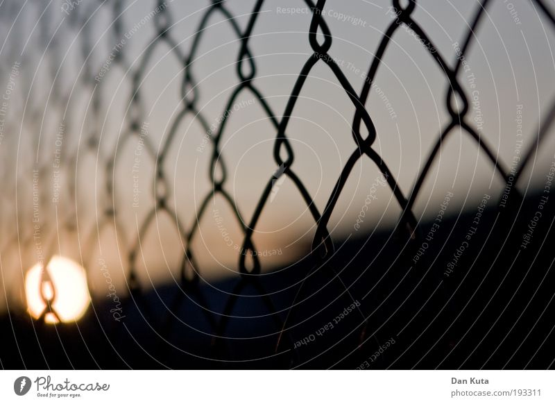 zaungast Sky Sun Sunrise Sunset Sunlight Transience Fence Wire netting fence see through Ball Dusk Evening sun Cloudless sky Cold Soft Focus on In transit