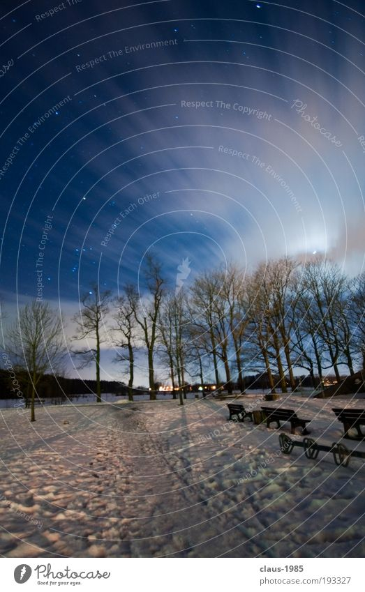 At night at the castle Art Nature Sky Clouds Stars Moon Winter Weather Ice Frost Snow Tree Park Beautiful Soft Blue Gray White Environment Colour photo