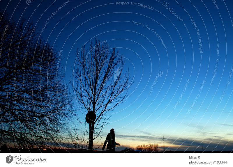 Blue hour Hiking 1 Human being Nature Landscape Sky Night sky Horizon Winter Weather Beautiful weather Field Dark Romance Hope To go for a walk Twilight