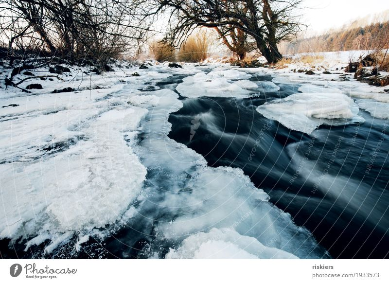 Nature Plant Blue Water White Landscape Winter Environment Snow Natural Wild Ice Esthetic Beautiful weather River Frost