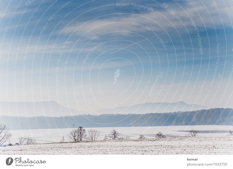 windy landscape Harmonious Well-being Calm Mountain Hiking Environment Nature Landscape Sky Clouds Winter Beautiful weather Ice Frost Snow Bushes Field Forest