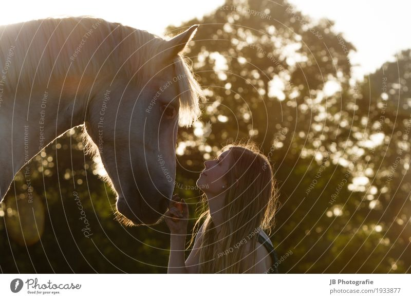 """""""Hey, Dude."""" Ride Summer Sun Equestrian sports Human being Feminine Young woman Youth (Young adults) Hair and hairstyles Face 18 - 30 years Adults Landscape Sky"""