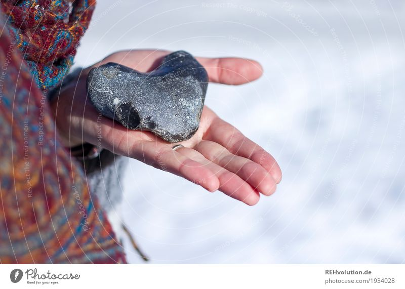 Heart in your hand Hand 1 Human being Snow Stone To hold on White Trust Protection Safety (feeling of) Sympathy Love Romance Responsibility Attentive