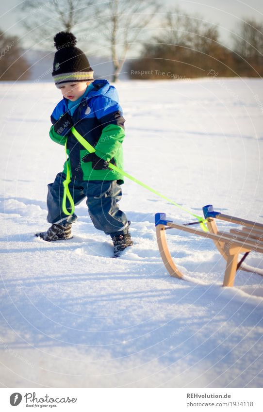 Human being Child Nature Sun Landscape Joy Winter Environment Cold Snow Movement Boy (child) Wood Small Going Masculine