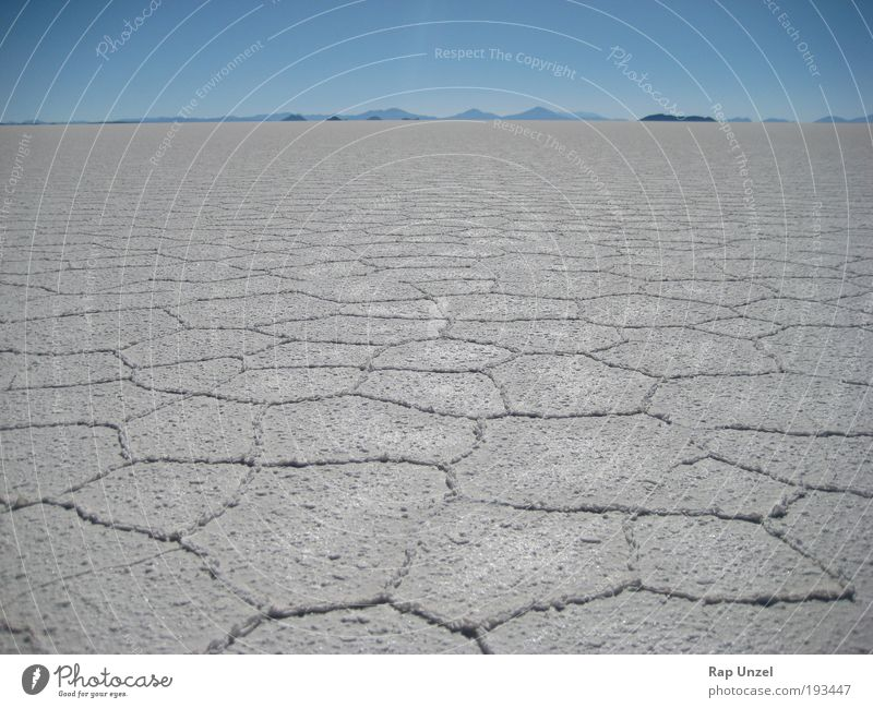 Salar de Uyuni Nature Landscape Plant Elements Earth Water Sky Cloudless sky Horizon Climate Beautiful weather Hill Desert Deserted Tourist Attraction