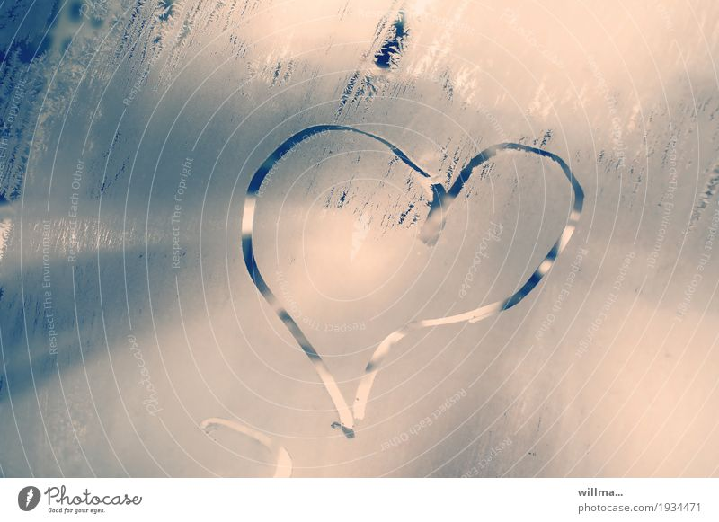 cold cold heart Valentine's Day Mother's Day Wedding Betrothal Winter Ice Frost Heart Cold Love Infatuation Frozen Window pane Frostwork Heart-shaped