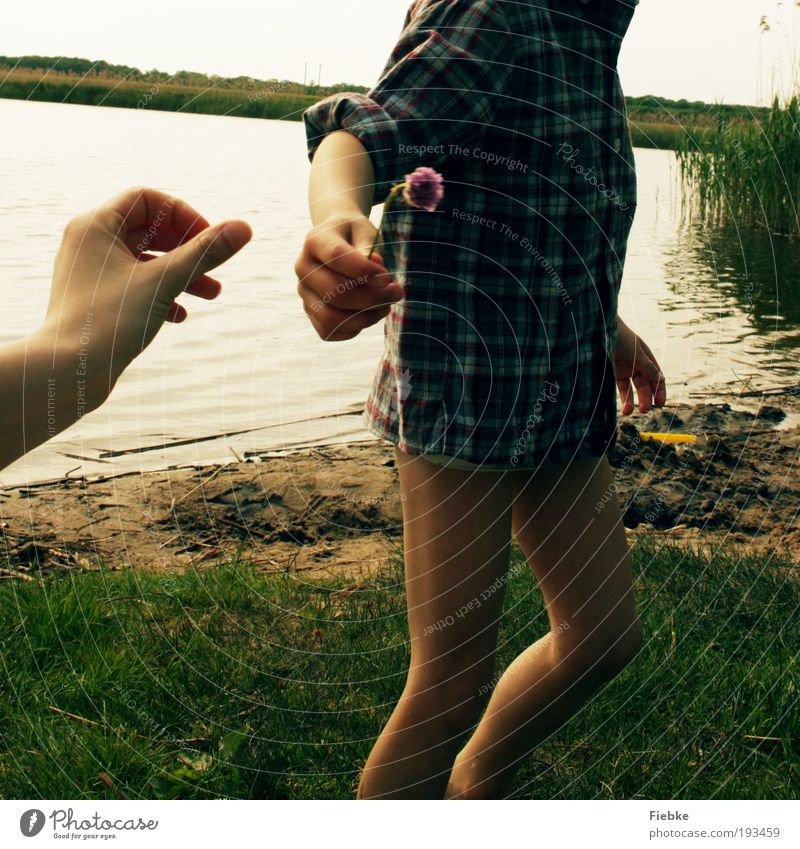 the gift Joy Happy Trip Summer Beach Human being Family & Relations Friendship Infancy Hand 2 Sand Water Flower Blossom Lakeside River bank Blossoming Fragrance