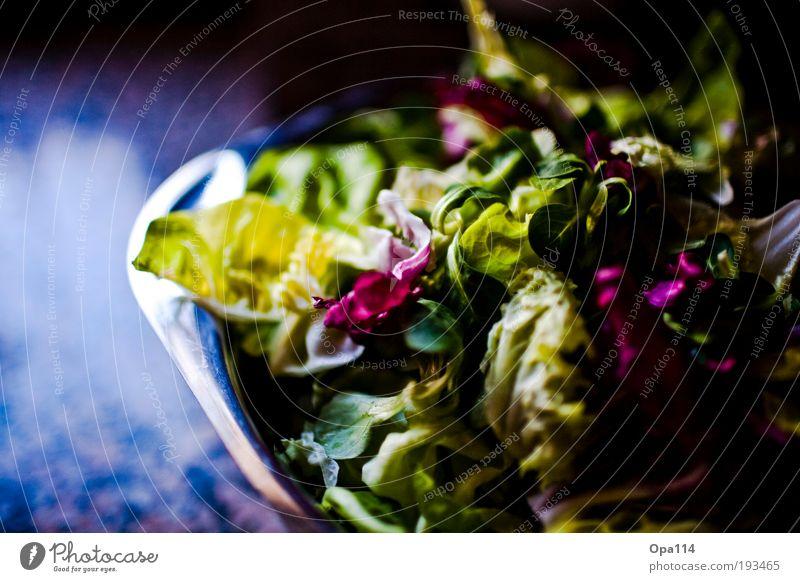 salad Food Lettuce Salad Nutrition Vegetarian diet Diet Bowl Fresh Healthy Green Violet Ease Colour photo Multicoloured Interior shot Close-up Detail