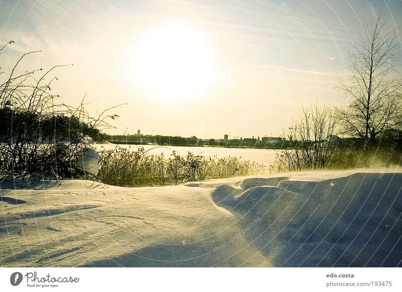 |Helsinki|#1| Nature White Sun Vacation & Travel Winter Cold Snow Environment Landscape Dream Park Weather Horizon Tourism Europe Elements