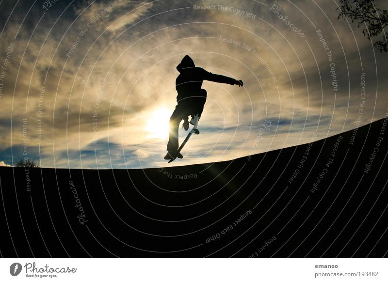pop 50. Lifestyle Joy Leisure and hobbies Summer Sports Halfpipe Youth (Young adults) 18 - 30 years Adults Movement Driving Jump Athletic Cool (slang) Free