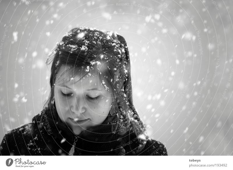 Youth (Young adults) Beautiful Winter Cold Snow Feminine Snowfall Think Bright Adults Elegant Freeze Young woman Portrait photograph