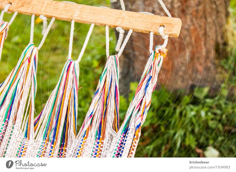 Nature Summer Relaxation Calm Garden Leisure and hobbies Dream Lie Serene Hang Patient Peaceful Hammock