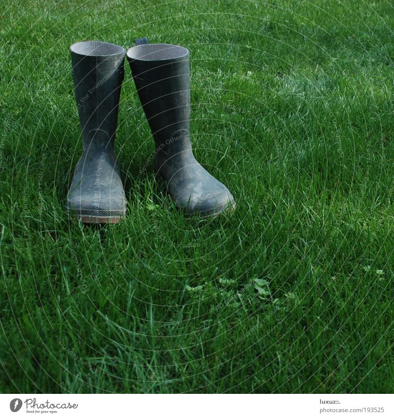 North Sea pumps Relaxation Garden House building Redecorate Gardening Construction site Environment Meadow Boots Rubber boots Sustainability Footwear Green