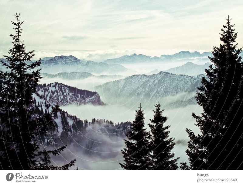 Nature Beautiful Tree Vacation & Travel Clouds Winter Forest Relaxation Dark Snow Mountain Landscape Environment Ice Fog Esthetic