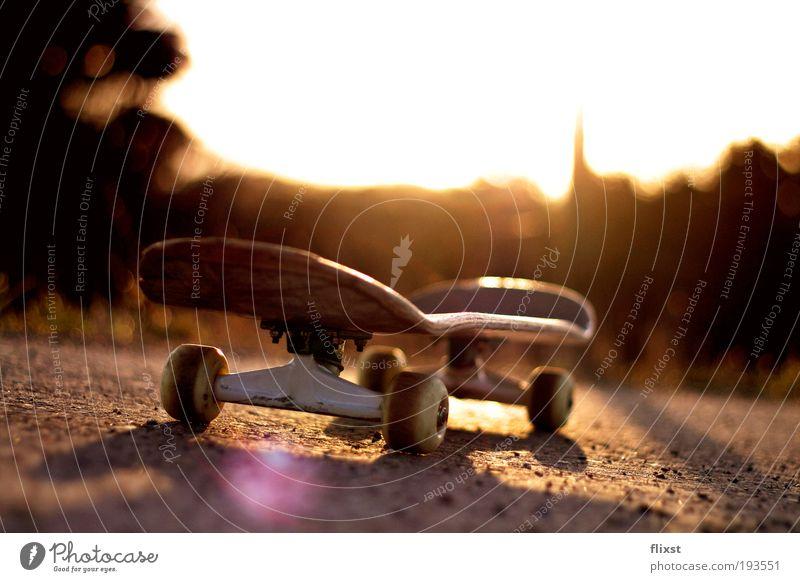 Beautiful weather Skateboard Dusk Funsport Lens flare Back-light Object photography
