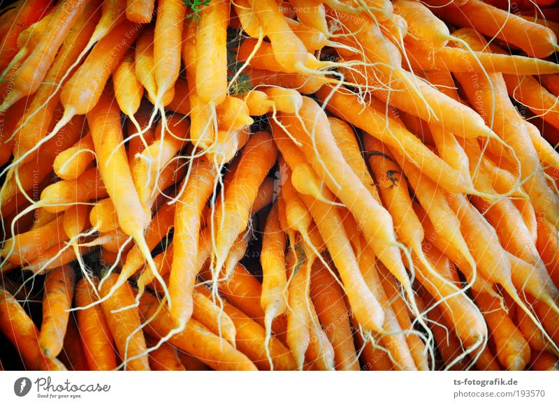 Osterhasen's favourite dream Food Vegetable Carrot Market stall Greengrocer Farmer's market Vitamin Vitamin A Root vegetable Healthy Looking Nutrition
