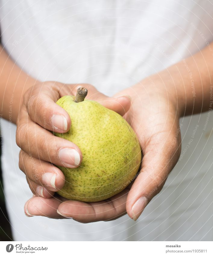 close up of hands - woman holding a yellow pear Human being Woman Nature Summer Healthy Eating White Hand Adults Yellow Autumn Natural Feminine Garden Fruit
