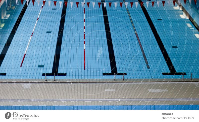 Relaxation Cold Sports Jump Line Open Wet Beginning Swimming pool Flag Vantage point Dive Tile Smoothness Surface of water Racecourse
