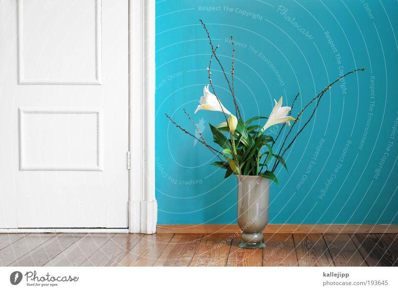 Nature Beautiful Plant Flower Leaf Environment Wood Blossom Style Door Interior design Room Flat (apartment) Elegant Decoration Lifestyle