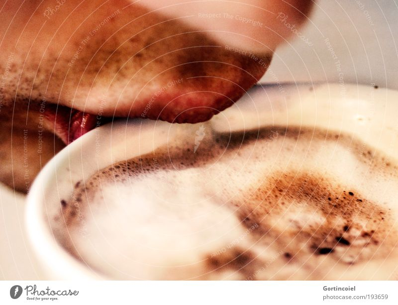 Human being Nutrition Warmth Mouth Nose Coffee Drinking Man Lips Hot Cup To enjoy Attempt Beverage Coffee cup