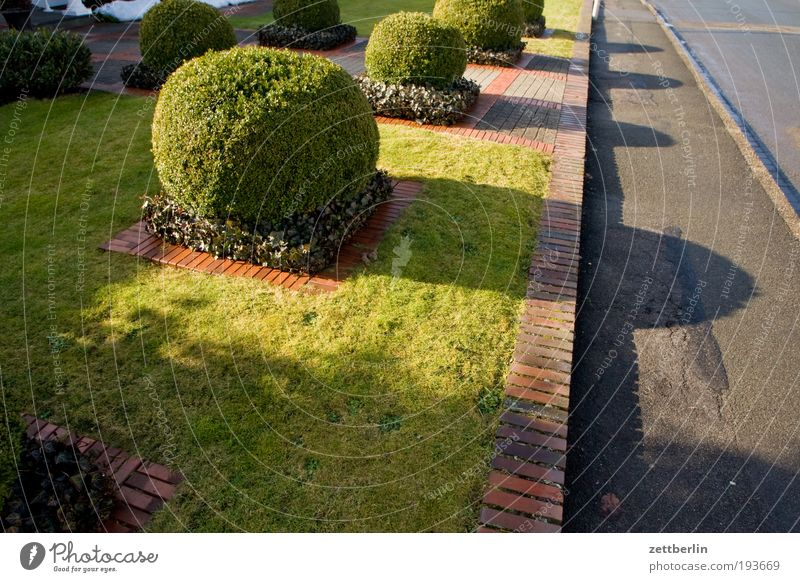 Spring at the Ruhr Street Road traffic Lanes & trails Garden Front garden Suburb Settlement Small Town House (Residential Structure) Gardener Clean accurate