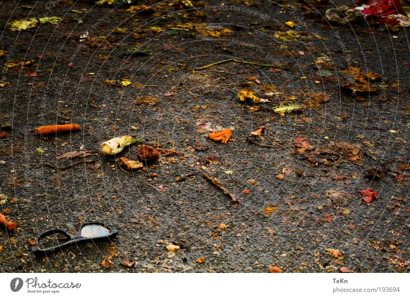 was over.... Food Vegetable Fruit Environment Nature Dirty Broken Fish Carrot Mud Sludgy Eyeglasses Colour photo Exterior shot Detail Deserted Day Contrast