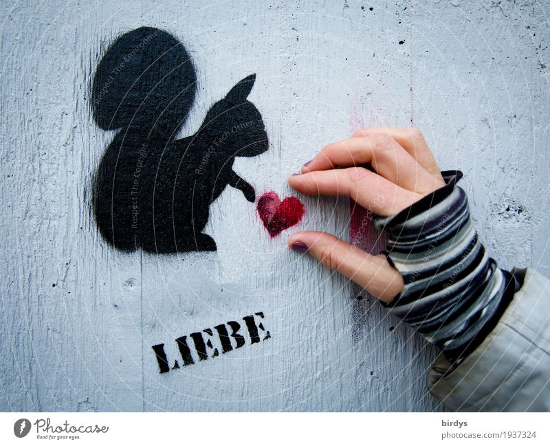 ...one can only give as a present Feminine Woman Adults Hand 1 Human being Wall (barrier) Wall (building) Gloves Squirrel Animal Characters Graffiti Heart Touch