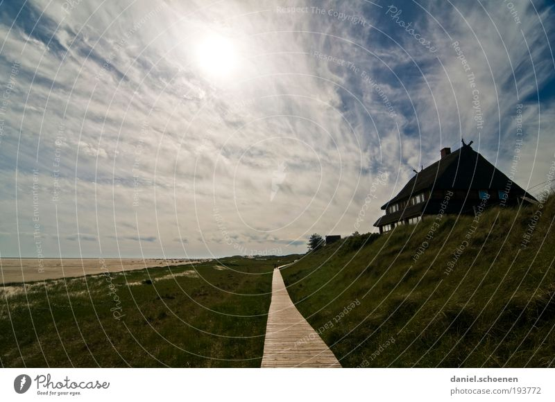 Amrum 5 Relaxation Calm Vacation & Travel Tourism Far-off places Freedom Summer Summer vacation Beach Ocean Island House (Residential Structure) Landscape Sky