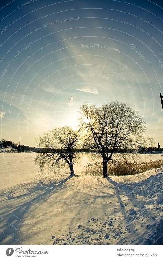 |Helsinki|#2| Sky Nature Blue White Beautiful Vacation & Travel Joy Winter Far-off places Snow Environment Landscape Earth Park Walking