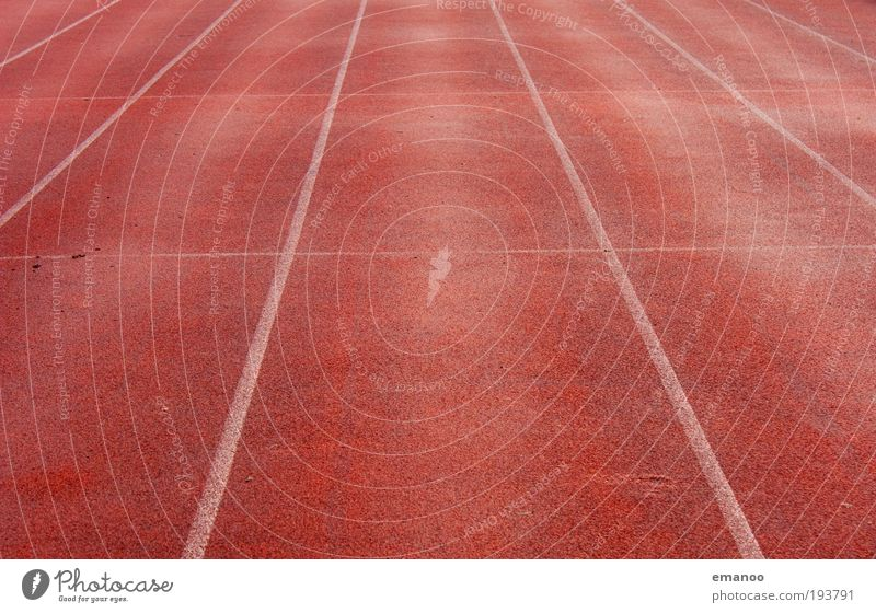 Red Far-off places Sports Movement Line Walking Beginning Speed Target Racecourse Sportsperson Direct Track Stadium Jogging Rubber